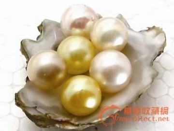 古代珍珠价值几许