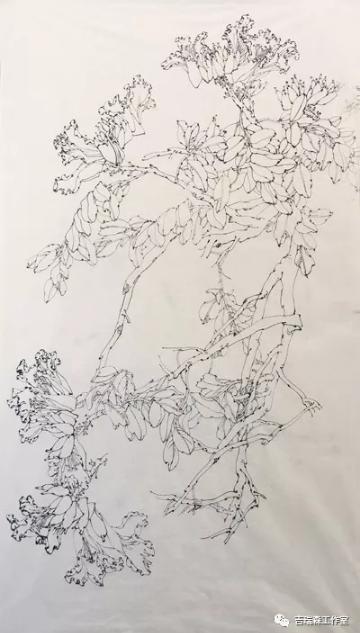 吉瑞森工作室2018年春季写生第一堂课――意笔与线描两种形式的写生《火焰花》